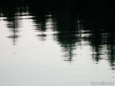 Reflexions