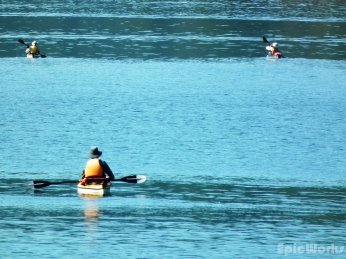 Another group of kayaks, off in the distance.