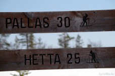 From Pallas to Hetta