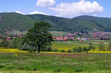 The fields of Kosovo