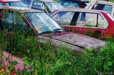 The car cemetery of Europe
