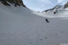 Skiing and bear prints