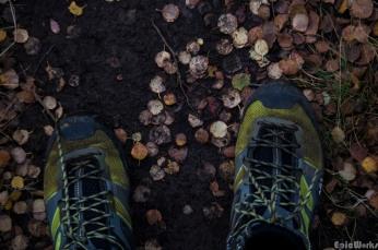 Autumn hikes