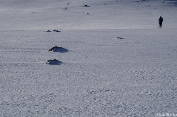 Following across the flat snow plain