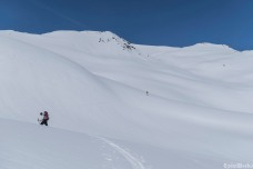 Stiking oout into the white desert
