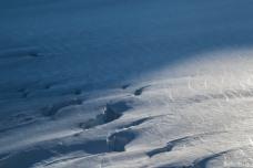Ice shadows